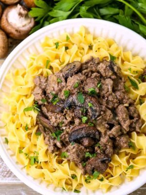 ground beef stroganoff served over noodles on a white diner plate